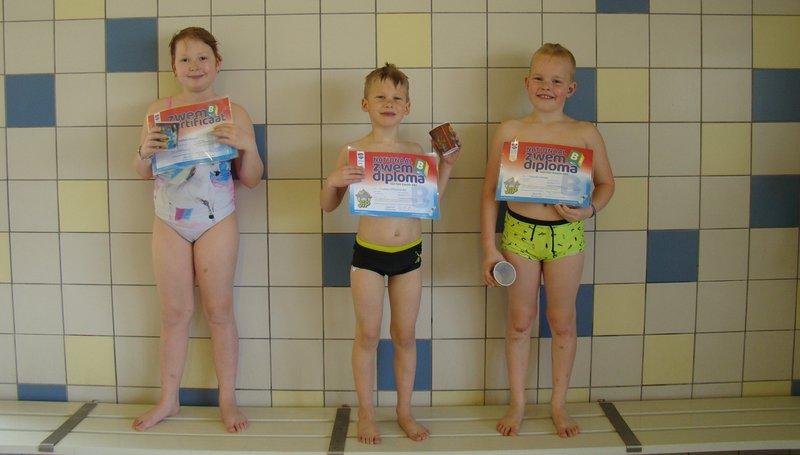 diplomazwemmen certificaat B nieuw.jpg